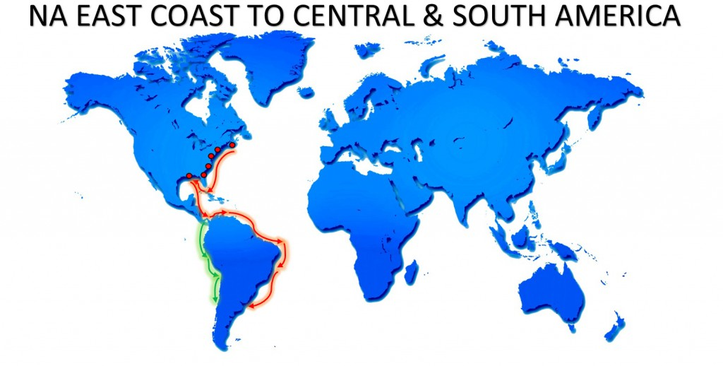 RO-RO NA EAST COAST TO CENTRAL AND SOUTH AMERICA SERVICE MAP