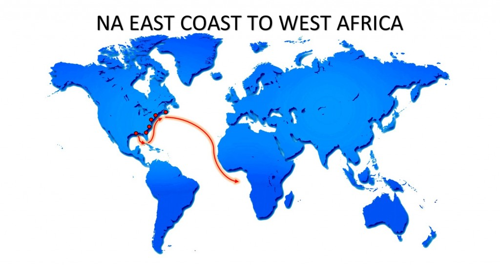 RO-RO NA EAST COAST TO WEST AFRICA SERVICE MAP